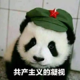 深圳市前海点筹互联网金融服务有限公司Android开发工程师