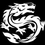 北京纵横盛世软件有限公司高级移动端工程师