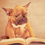 开心图书产品经理
