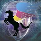 前广州捕获信息科技有限公司flutter开发