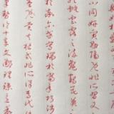 前亚信科技(中国)有限公司开发经理