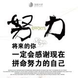 上海杏和软件有限公司软件工程师