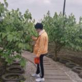 前重庆硕朝睿邦网络技术有限公司高级前端工程师