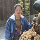 前智美环球(北京)国际贸易有限公司美工组组长